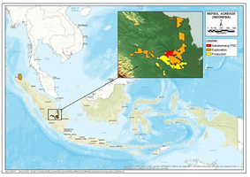 Repsol in Indonesia – Oil discovery, Indonesia